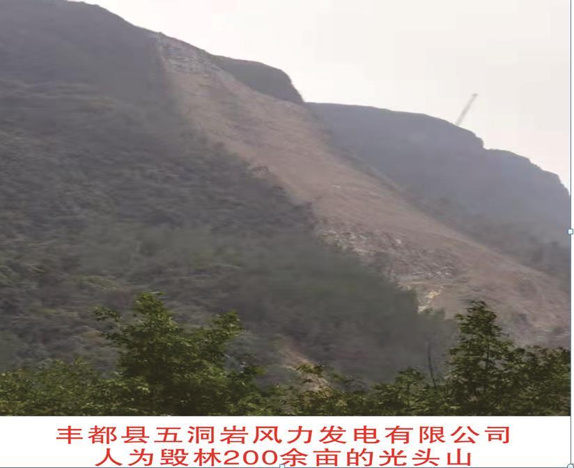 重庆丰都县五洞岩风电项目违规毁林引发泥石流责任谁负?